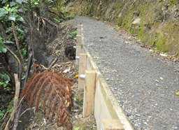 Walking track retainer wall